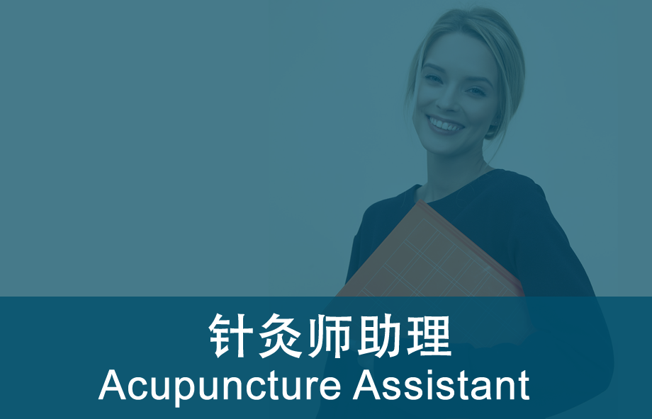 acupuncture_assistant_920_png