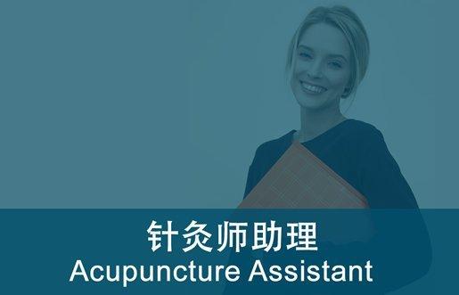 acupuncture_assistant_fi_515