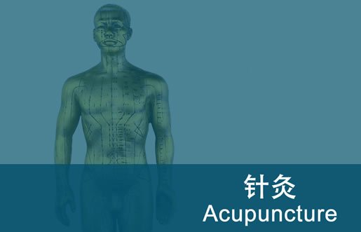 acupuncture_diploma_fi_515