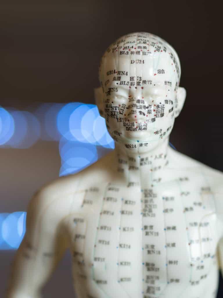 Acupuncture_model_768x1024